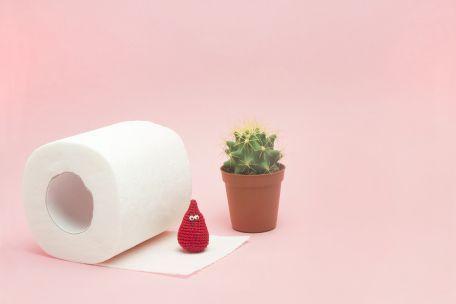 Rotolo di carta igienica, cactus, pupazzetto rosso di lana | Daflon® 500